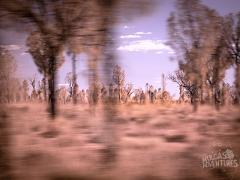 Uluru to Alice Springs Transfer