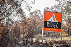 Mogo Zoo - Supporting our Fire Affected Areas - Tuesday 8th September 2020 Southern Highlands via Nowra