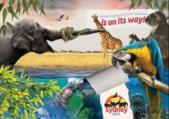 Sydney Zoo - 26th March 2019