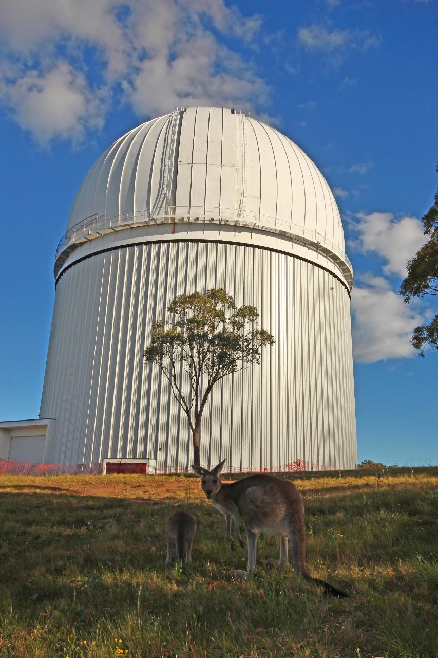 Anglo Australian Telescope - DISCOVERY PROGRAM