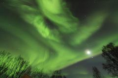 Happy Aurora New Year - 28 December 2019 - 10 January 2020 - WITH * FRED WATSON *