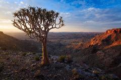 Namibia Dark-Sky Safari - 9 - 23 April 2020