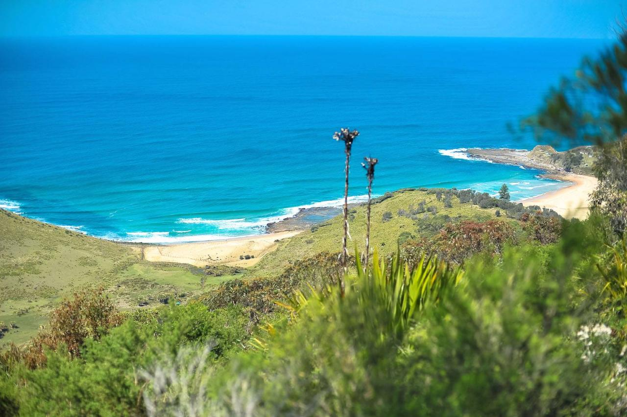 The Royal Tour - Royal National Park Private Full Day Tour