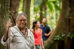 Daintree Discovery Tours - Afternoon Tea/Shuttle