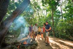 Value Saver Package- Mossman Gorge National Park plus Dreamtime plus Mayi Cafe Lunch