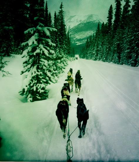 Narnia Tour