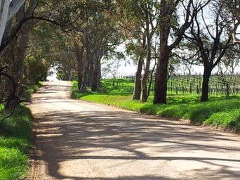 Adelaide Hills  /  Hahndorf Tour