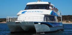 Oceanic Victor in-sea aquarium & Fleureiu Peninsula / McLaren Vale Tour - EX Adelaide CBD, Glenelg & Hahndorf