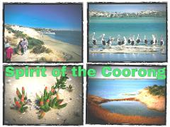 Spirit of Coorong Discovery Cruise & Fleurieu Peninsula Tour - EX Adelaide, Glenelg & Hahndorf