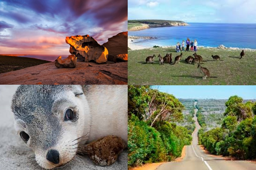 #13 Kangaroo Island Explorer Tour - Full Day (EX Penneshaw) - from $179