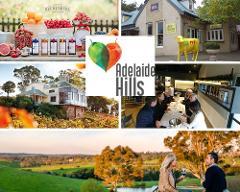 Adelaide Hills/Hahndorf & McLaren Vale Tour