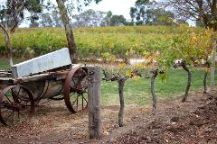 Full Day - Barossa Valley Regional Tour