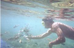 Sout West Gili Island Snorkeling