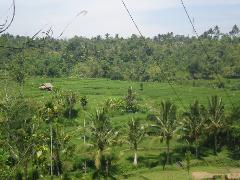 5 Days 4 Nights Lombok Explore Native and Eco Tours
