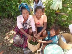 Baucau Districts Cultural & History Immersion Tour