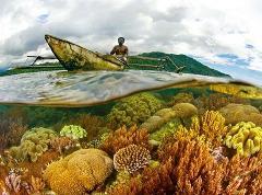 Timor Explorer