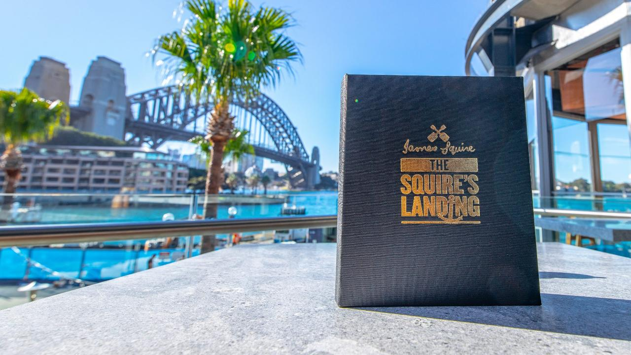Private Flight and Lunch (The Squire's Landing Brewhouse Circular Quay)
