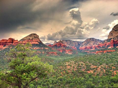 Sedona Magical Vortex Tour