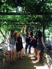 Sedona & Wine Bachelorette Special Tour with Tasting