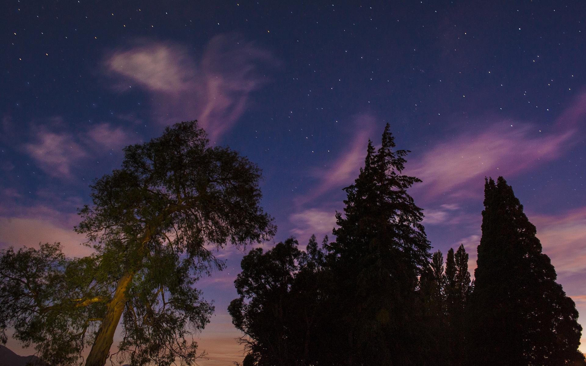 Astro Night Photography Workshop
