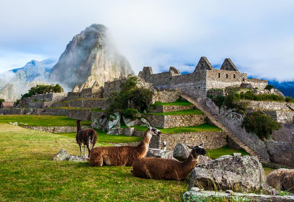 South America & Machu Picchu
