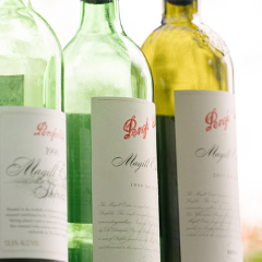 Penfolds Magill Estate Shiraz - Vertical Tasting Flight