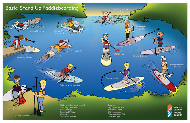 SUP 1: Stand Up Paddleboarding: The Basics