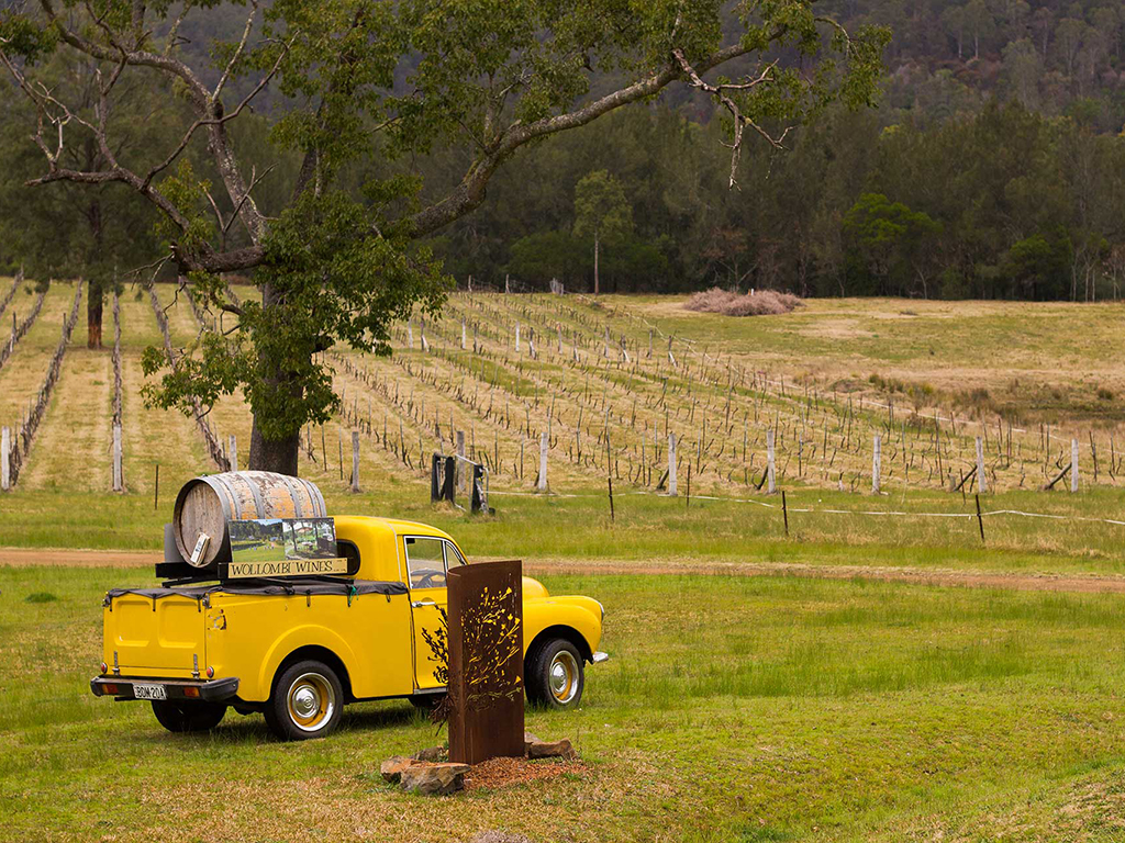 GIFT CARD: Chef-Led Hunter Valley Gourmet Food and Wine Tour
