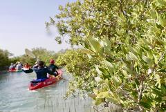 Mangroves Hidden Waterway Tour (PURPLE ISLAND)