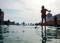 LET'S PADDLE The Pearl-Qatar SUP/ Kayak  (mixed level)