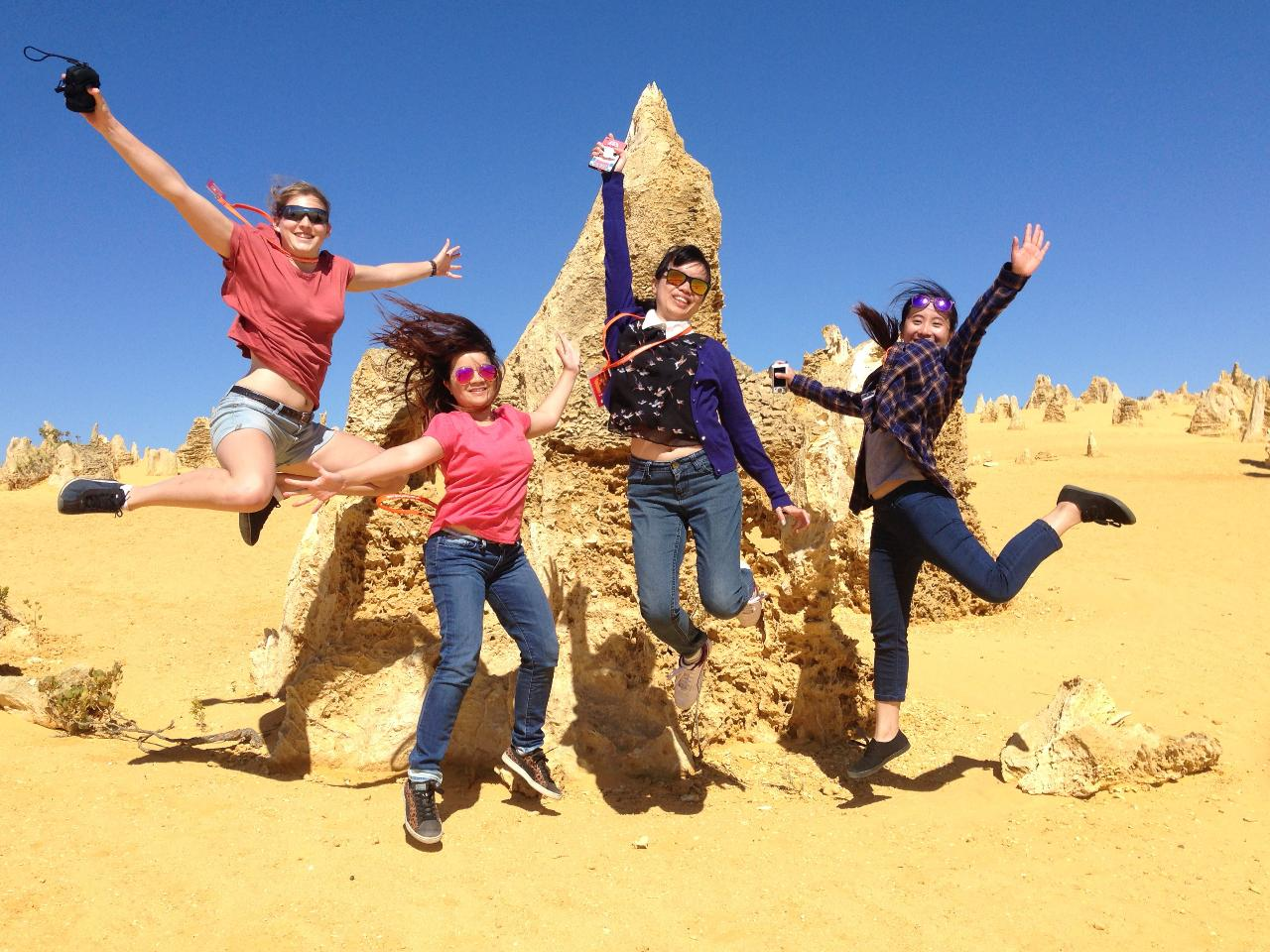 Explore The Best Of Perth - Wildlife Park, Swan Valley, Pinnacles and Sand Boarding