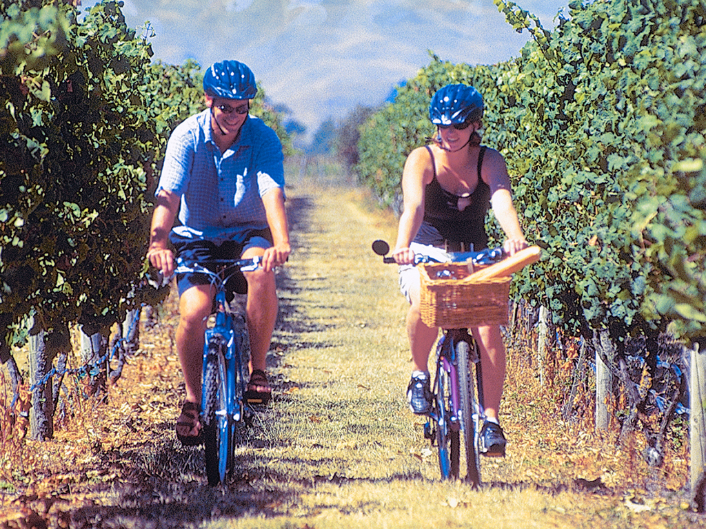 Winery Tour on Tandem