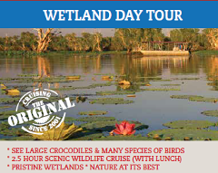Wetlands Day Tour- on the Corroboree Billabong on the picturesque Mary River Wetlands, viewing a huge variety of wildlife and crocodiles