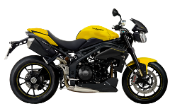 Triumph Speed Triple R SE94 1050 (BNE)