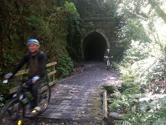 Wairarapa Explorer - Week of luxury cycling