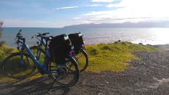 Electric Assist Bike Hire - Half Day, Petone