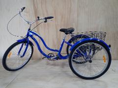 Tricycle full day hire