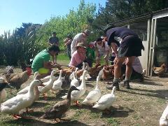 Martinborough Guided Family Fun