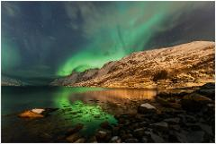 GreenFox Special - Tailored tour for 2nights and 1day for 22000NOK groups up to 8pax