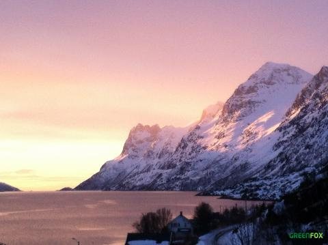 Visit to the local fjords
