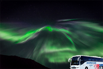 Green Fox Guiding Magic Bus Tour Aurora Chasing - max 55pax