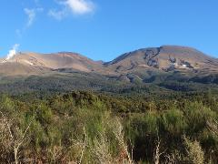 Awesome Tongariro Alpine Crossing (Return) from Turangi... SUMMER TIMETABLE