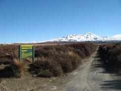 Turangi to Waihohonu Track