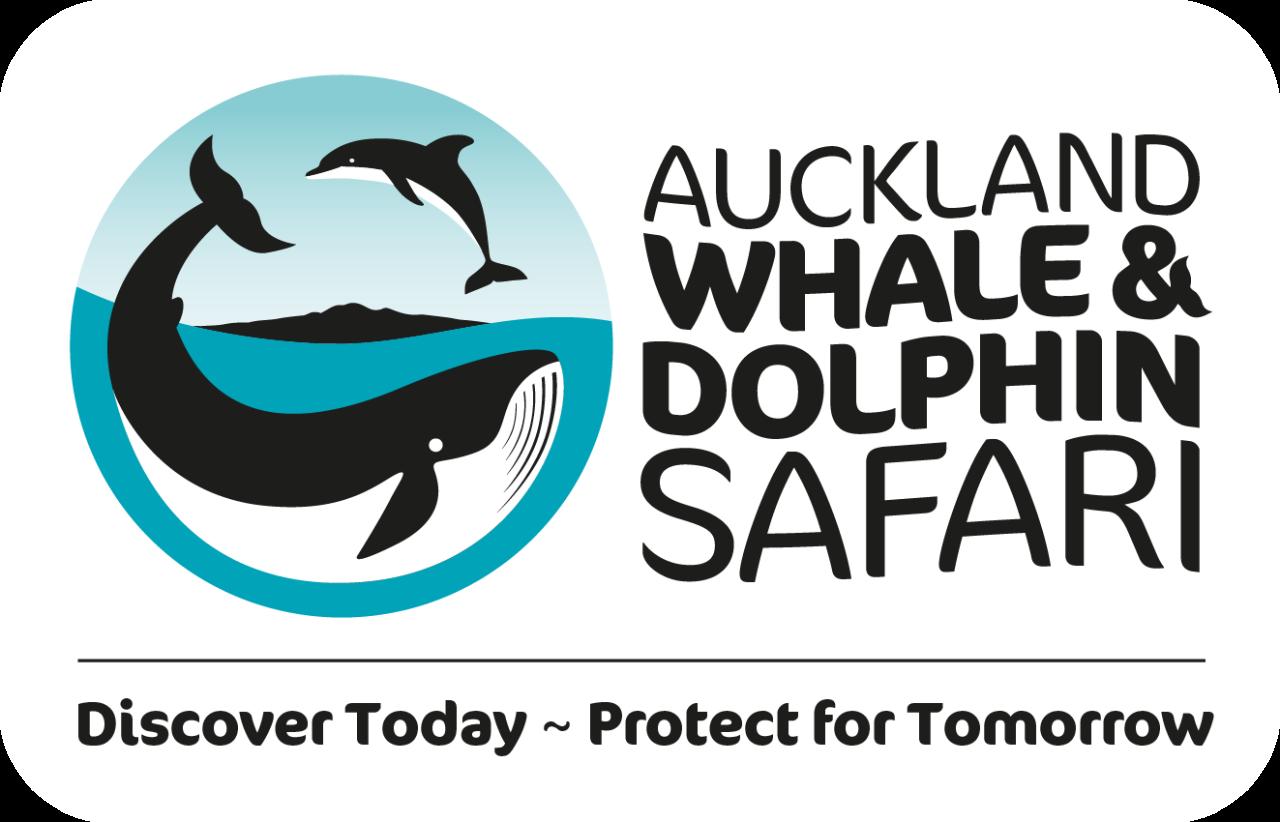 Auckland Whale & Dolphin Safari + Auckland Explorer Bus COMBO