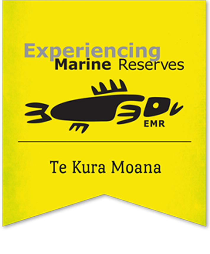 Marine Mammal Eco-Safari - Experiencing Marine Reserves Fundraiser