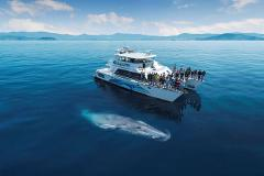 Wildlife Cruise - Private Charter