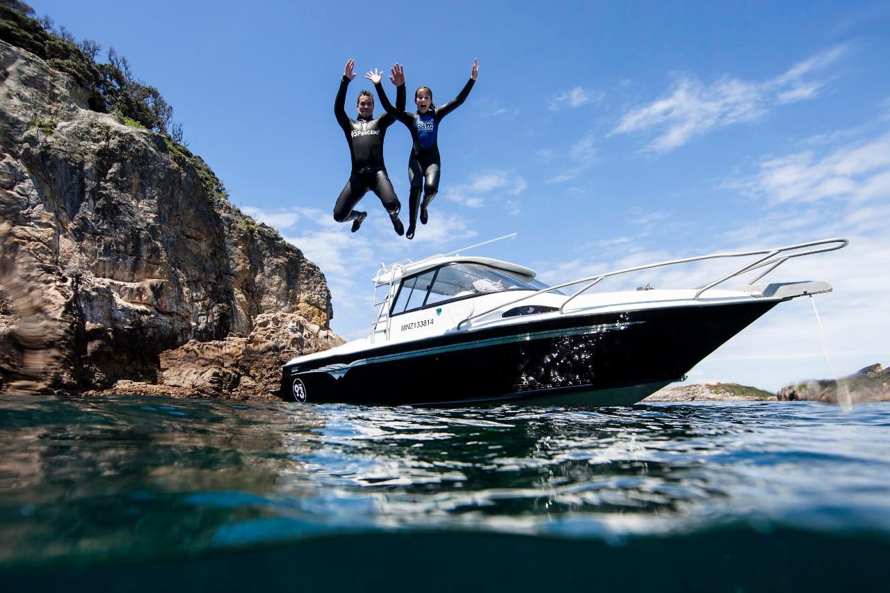 Young Ocean Explorers Present:  Exploring the Hauraki Gulf Marine Park!