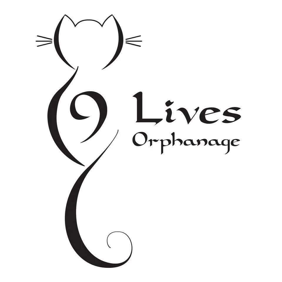 Marine Mammal Eco-Safari - 9 Lives Orphanage Fundraiser