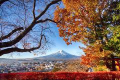 Japan Autumn Workshop 2018