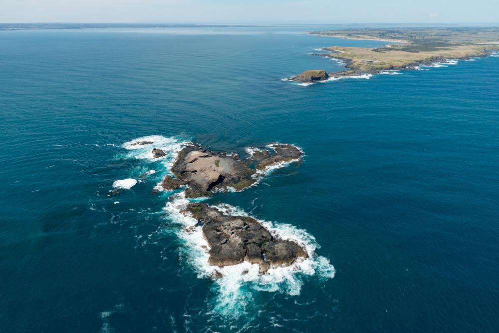 Scenic Flight 3 - Seal Rocks, Penguins & The GP Circuit